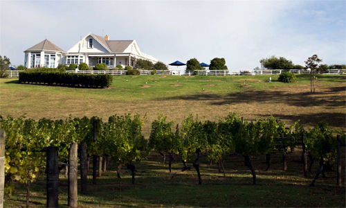 Wine Trails - Matua Valley Wines